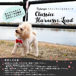SALE セール 犬 ハーネス ラディカ  クラシックハーネス&リード S M Lサイズ  犬の胴輪 1点のみメール便選択可 radica 12