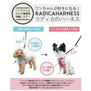 SALE セール 犬 ハーネス ラディカ  クラシックハーネス&リード S M Lサイズ  犬の胴輪 1点のみメール便選択可 radica 14