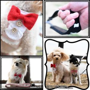 SALE セール 犬 ハーネス ラディカ  クラシックハーネス&リード S M Lサイズ  犬の胴輪 1点のみメール便選択可 radica 09
