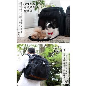 SALE セール 犬 リュック ラディカ リュックキャリー Mサイズ 100円OFFクーポン対象 メール便不可|radica|04