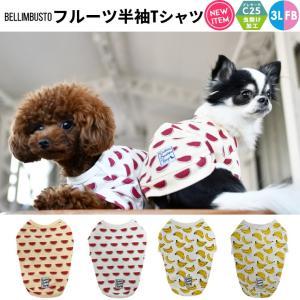 犬 服 ラディカ フルーツ半袖Tシャツ クール 虫よけ 100円OFFクーポン対象 1点のみメール便選択可