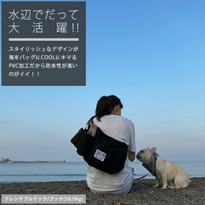クーポンで100円OFF 犬マナー 散歩用品 ラディカ 2WAYお散歩エプロン 消臭機能 エチケット 犬 イヌ おでかけ 1点のみメール便選択可|radica|16