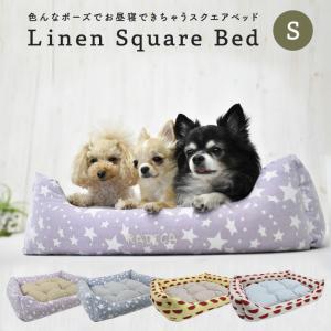 犬 ベッド ラディカ  RADYスクエアベッド Sサイズ クッション 200円OFFクーポン対象  メール便不可