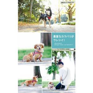 クーポンで100円OFF 犬 ハーネス  ラディカ RADYハーネス L LL FBサイズ  1点のみメール便選択可|radica|12