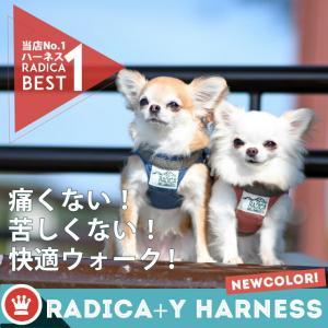 クーポンで100円OFF 犬 ハーネス  ラディカ RADYハーネス L LL FBサイズ  1点のみメール便選択可|radica|03