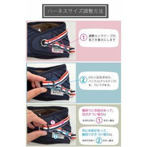 クーポンで100円OFF 犬 ハーネス  ラディカ RADYハーネス L LL FBサイズ  1点のみメール便選択可|radica|08