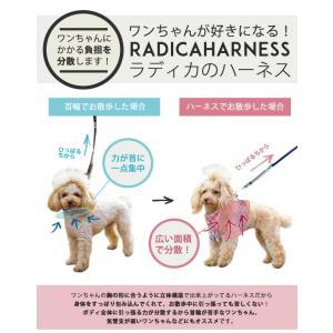 クーポンで100円OFF 犬 ハーネス  ラディカ RADYハーネス L LL FBサイズ  1点のみメール便選択可|radica|09