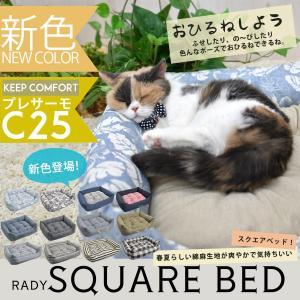 猫 ベッド ラディカ  《期間限定半額セール/返品・交換不可》 RADYスクエアベッド Sサイズ メール便不可