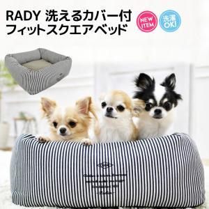 クーポンで100円OFF 特典対象 犬 ベッド ラディカ RADY 洗えるカバー付 フィットスクエアベッド  Mサイズ クッション メール便不可