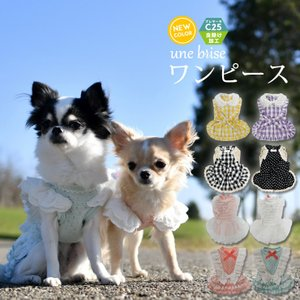 990円+税 在庫限り SALE セール 犬 服 ラディカ ワンピース クール 虫よけ フリル M L 春夏 メール便可