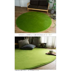 ラグ 洗えるカーペット 円形 140 丸 おしゃれ じゅうたん カーペット|ragmatst|11