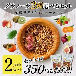2個セット フルーツグラノーラ(キウイ・いちご入) ドライフルーツ 愛媛県産 柑橘