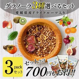 3個セット フルーツグラノーラ(キウイ・いちご入) ドライフルーツ 愛媛県産 柑橘