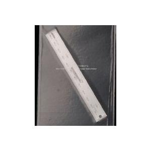 ボイジャーモデル TE-Z13 1/24 比例尺|rainbowten
