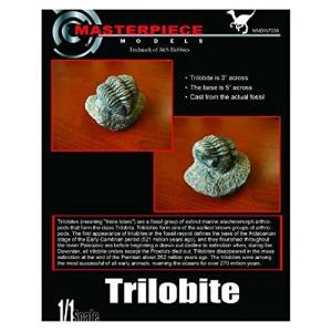 マスターピースモデル DIN7036 1/1 トリロバイト(三葉虫) 本物の化石の型を取ったレジン製模型です|rainbowten