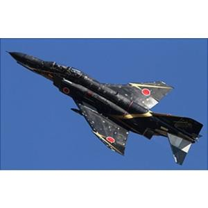 フジミ F06 1/72 F-4EJ ファントムII 飛行開発実験団 60周年記念|rainbowten