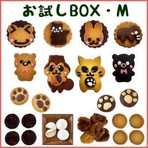 【商品内容】  動物クッキー(リス・ネコ)各1枚(約5cm×7.5cm)  動物ビスケット(カエル・...
