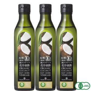 有機ココナッツビネガー 280ml 3本 ココナッツ酢 ココナッツサップビネガー JASオーガニック 有機醸造酢 純ココナッツ花序液酢|rainforest-herbs