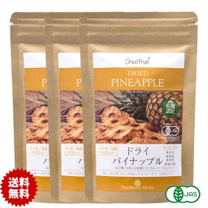ドライパイナップル 65g JASオーガニック タイ産有機 3袋 JAS Certified Organic Dried Pineapple|rainforest-herbs