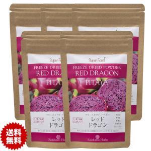 レッドドラゴンフルーツ ピタヤ フリーズドライパウダー 60g 5袋 Red Dragon Fruit Freeze Dried Powder PITAYA|rainforest-herbs