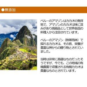 チョコレートチップ ペルー産有機カカオ70% クーベルチュールチョコレート 有機ココナッツシュガー 500g 1袋 有機JASオーガニックダーク クール便|rainforest-herbs|09