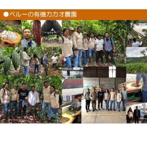 チョコレートチップ ペルー産有機カカオ70% クーベルチュールチョコレート 有機ココナッツシュガー 500g 1袋 有機JASオーガニックダーク クール便|rainforest-herbs|10