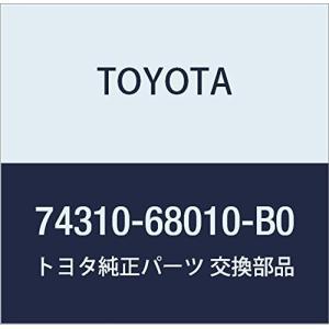 TOYOTA (トヨタ) 純正部品 バイザASSY RH (LT.GRAY) ウィッシュ 品番74310-68010-B0|rainyblues
