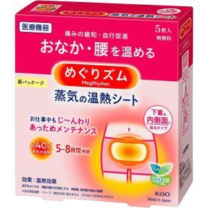 花王 めぐりズム 蒸気の温熱シート 下着の内側面に貼るタイプ 5枚入|rakushindenki