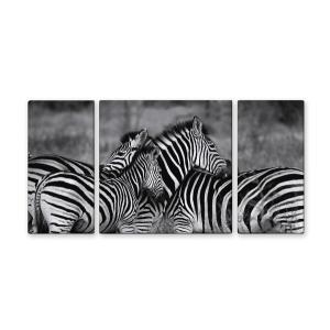 ウォールデコレーション アートパネル モダン 絵 キャンバスアート zebra-mono/シマウマ W600×H300 sd4999363 rakusouya