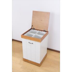 ごみ ゴミ箱 ダストボックス おしゃれ 仕切りが選べるダストボックス 完成品|rakusouya