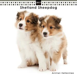 2017年 ミニカレンダー シェットランド・シープドッグ(シェルティー) (メール便可 ギフト包装可 犬用品 カレンダー)