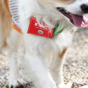 犬 迷子札 ラロック 犬用 鑑札入れ 反射ロゴ付きカラーポーチ メール便のみ送料無料 メール便可 ギフト包装可|ralloc|02