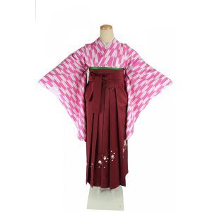 二尺袖 着物 矢絣 お仕立て上がり S/Fサイズ 刺繍 袴 エンジ & 袴下帯 3点セット 2K-PK-HS-E ran
