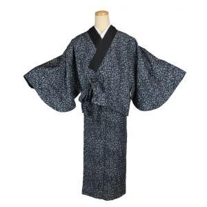 二部式着物 ひょう柄 KNK-1 リバーシブル セパレート きもの 簡単着付け Мサイズ|ran
