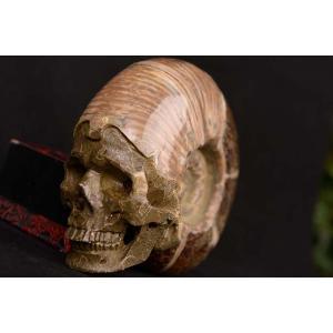 一点物 アンモナイト化石 ヒューマンスカル(人間頭蓋骨) カービング(彫刻) 1287g|白亜紀|マダガスカル産|rapanui