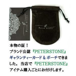 【PETER STONE】セブンチャクラ キュービックジルコニア スターリングシルバー ペンダントトップ rapanui 03