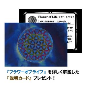 【PETER STONE】フラワーオブライフ(生命の花) ロータス(蓮花) ペリドット シルバー ペンダントトップ rapanui 06
