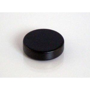 ネオジム磁石(樹脂塗装)φ12.7mm×2.4mm(N35) 1個