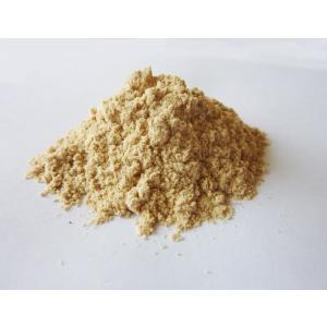 焼きエビ粉(500g)|rasalhanut