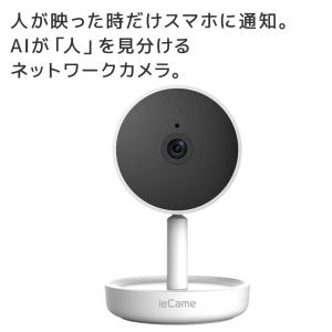 国内ブランド ieCame ネットワークカメラ RS-WFCAM1 防犯 子供 見守り 家庭用 ペット 屋内 室内 動体検知 通知 防犯カメラ|ratoc