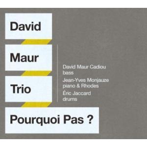6/5 最大5000円クーポン&P5% 澤野工房 Jazz Collection 「POURQUOI PAS ?」ダヴィッド・モウ・トリオ AS132 クロネコDM便|ratoc