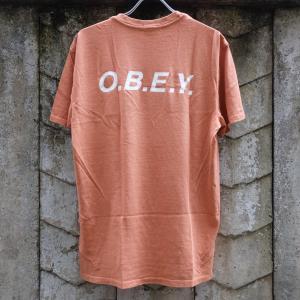 オベイ ベーシック ピグメント Tシャツ キャラメル|rawdrip