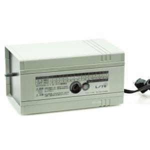 【全国送料無料】アデックス L75オゾナイザー【本体】 オゾン発生器 【在庫有り】|rayonvertaqua