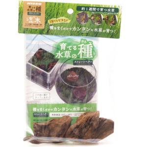 ニッソー 育てる水草の種 ストレートヘアー&流木 【在庫有り】(新商品)|rayonvertaqua