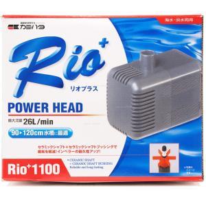 在庫有り!!即OK カミハタ パワーヘッドポンプ リオプラス1100 60Hz 西日本仕様|rayonvertaqua