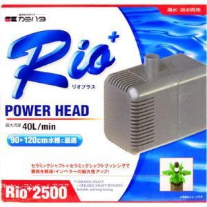 カミハタ パワーヘッドポンプ リオプラス2500 60Hz 西日本仕様【在庫有り】「1点まで」|rayonvertaqua