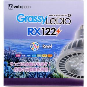 【送料無料】ボルクスジャパン グラッシーレディオ RX122 リーフ 【在庫有り】「2点まで」|rayonvertaqua