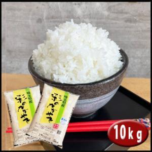 無洗米 彩のかがやき 10kg(5kg×2袋) 埼玉県産 検...