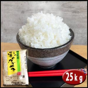 お米  25kg 埼玉県産 彩のかがやき 白米 契約農家直送米 30年産|rc-kaneko