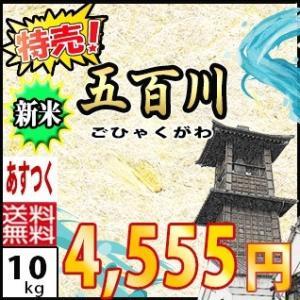 29年産☆埼玉県産 五百川 10kg(2kg×5)|rc-kaneko